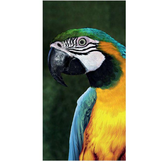 Toalha-de-Praia-Resort-Veludo-Big-Macaw---Buettner