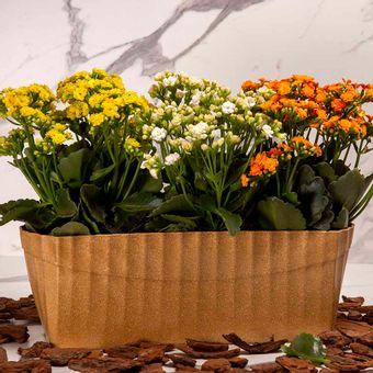 Floreira-Plissada-Cerejeira-Evo-Ambientada-ShopCama