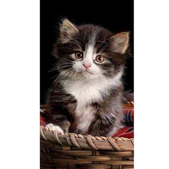 Toalha-de-Praia-Aveludada-Buettner-Cat-Along